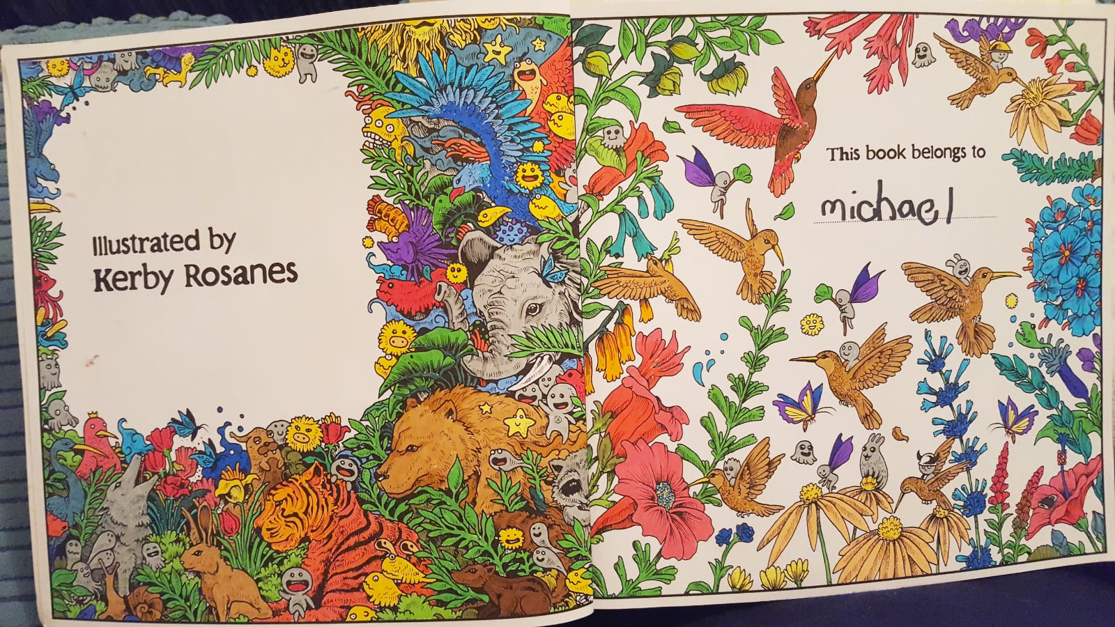 Colouring in by michael